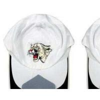 Cadre casquette